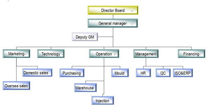 Organization Structure of Top Lockers Limited